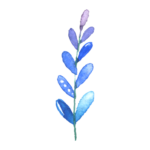 Icon - Resources - blue watercolor branch and leaves